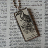 Toucan, tropical bird, vintage 1940s dictionary illustration upcycled to soldered glass pendant