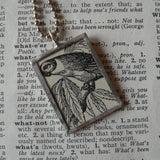 Wild parrot, bird, vintage 1940s dictionary illustration upcycled to soldered glass pendant