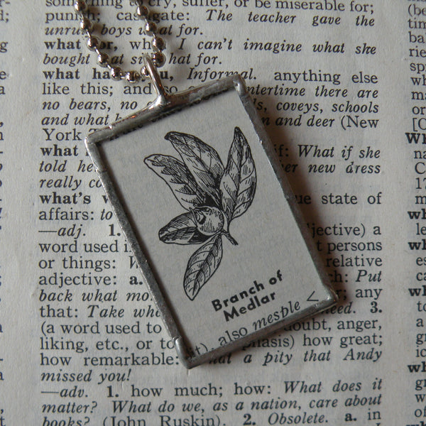Branch of Medlar, vintage botanical dictionary illustration, up-cycled, soldered glass pendant