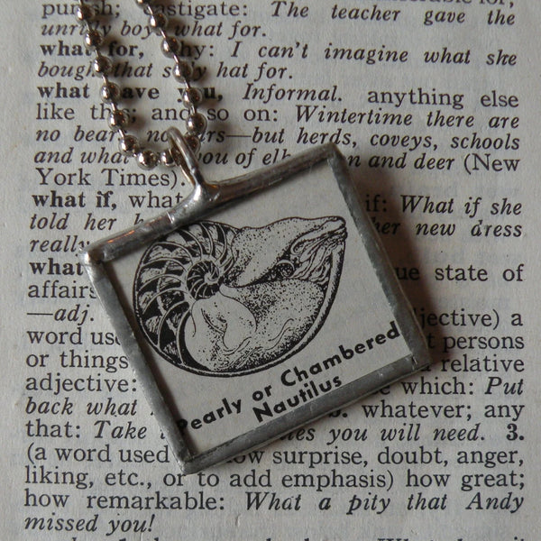 Pearly Chambered Nautilus, vintage dictionary illustration, upcycled to soldered glass pendant