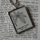 Palmate leaf structure, vintage botanical dictionary illustration, up-cycled to soldered glass pendant
