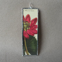 Water lily and peony, vintage botanical illustration, hand-soldered glass pendant