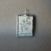 Mistletoe plant, vintage botanical dictionary illustration, upcycled to soldered glass pendant