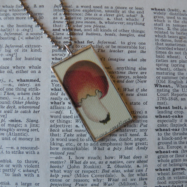 Mushroom and fungus, vintage natural history illustrations up-cycled to soldered glass pendant