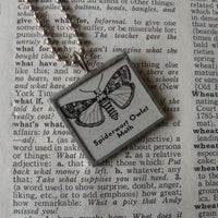 Owl and Chick with cocktails, vintage children's book illustrations, upcycled to soldered glass pendant