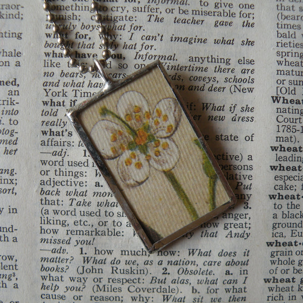 Peach blossom and peach pit, vintage botanical illustrations, hand-soldered glass pendant