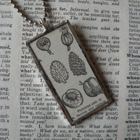 Pericarp fruits, seed pods, peach pit, vintage botanical dictionary illustration, upcycled to soldered glass pendant