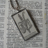 Pitcher plant, vintage botanical dictionary illustration, up-cycled to soldered glass pendant
