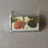 Blackberry, raspberry, antique botanical illustrations, up-cycled to soldered glass pendant