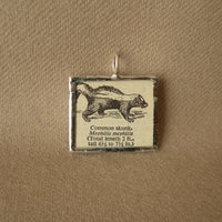 Skunk, vintage 1940s dictionary illustration, up-cycled to hand-soldered glass pendant