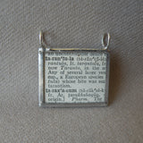 Tarantula spider, vintage scientific dictionary illustration, upcycled to hand soldered glass pendant