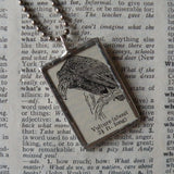 Vulture, vintage 1940s dictionary illustration, upcycled to soldered glass pendant