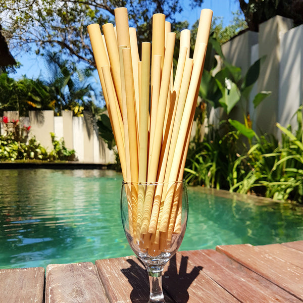 [Bundle] Set of 2 Bamboo Straws (Save 15%!)