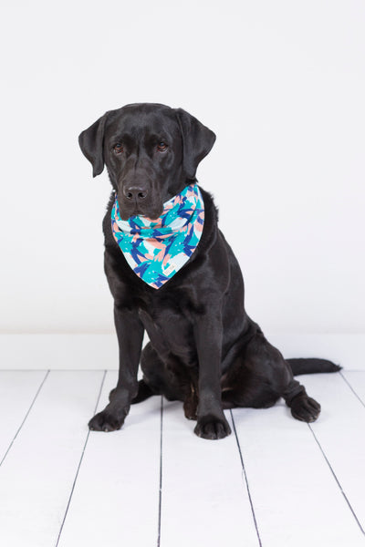 The Paws Bandana // Perfect Wave