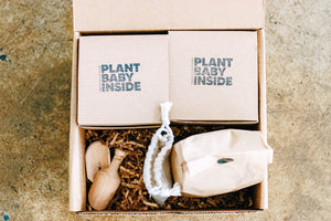 "PIY ""Pot It Yourself"" Box"