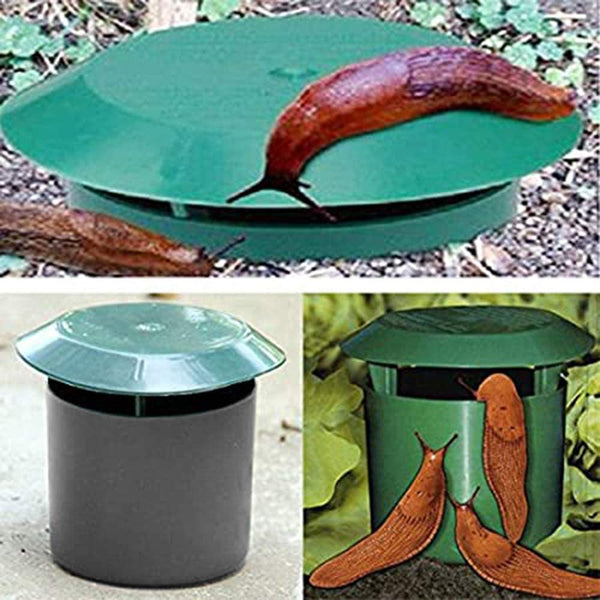 DIVCHI Beer Slug & Snail Traps Simple To Use No Pellets Safe Around Children And Pets - Divchi