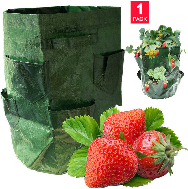 DIVCHI Strawberry Grow Bags, 1Pack Strawberry Planter with Multi Side Grow Pockets, Breathable Non-woven Fabric Reinforce Handle Strawberry Growing Bag for Garden Strawberries, Herbs, Flowers - Divchi
