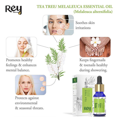 Rey Naturals Tea Tree Essential Oil for Aromatherapy - Tea Tree Essential Oil for Healthy Skin, Face, and Hair - 100% Organic Remedy for Dandruff, Acne - 45 ml (15 ml x 3) super saver combo