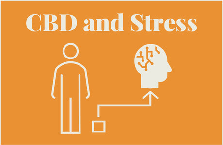 How can CBD help me cope with stress?