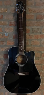 Takamine EF341SC Legacy Series Bruce Springsteen Signature Westerngitarre