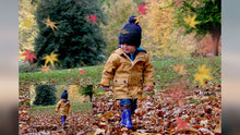 Load image into Gallery viewer, Autumn Leaves & Branch Overlays
