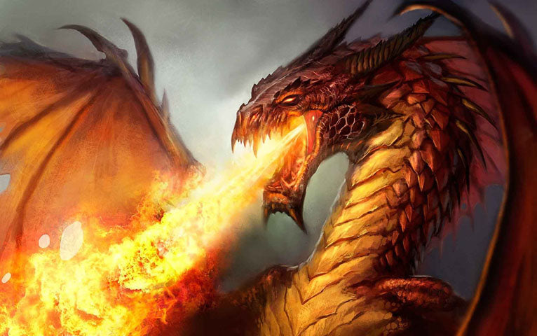 Dragon Flammes