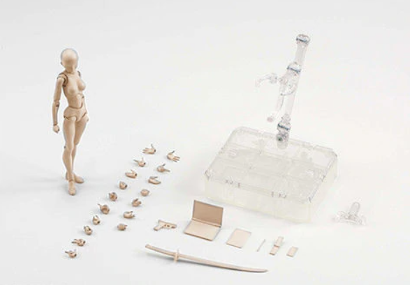 Body Chan Model Drawing Figure - Light Complexion