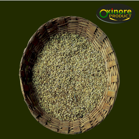 Gandhagasala Rice Seed - Food Care INDIA