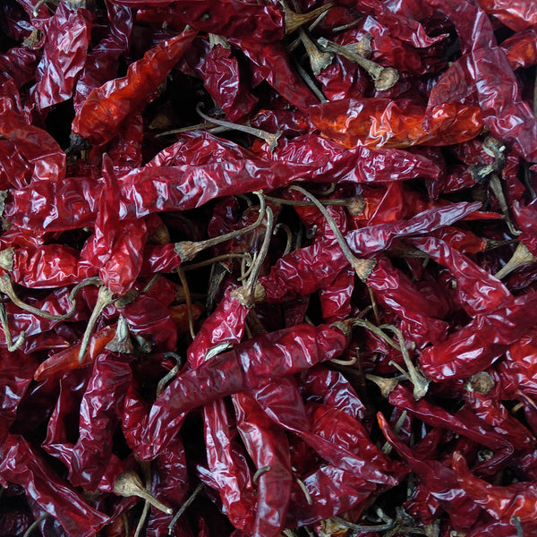 Red Chilli - Dry - Food Care INDIA