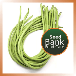 Long bean seeds - Food Care INDIA