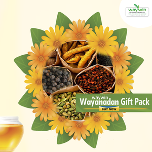 Wayanadan Gift Pack - waywin - Food Care INDIA