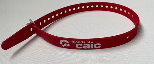 Friends of CAIC Logo Ski Strap