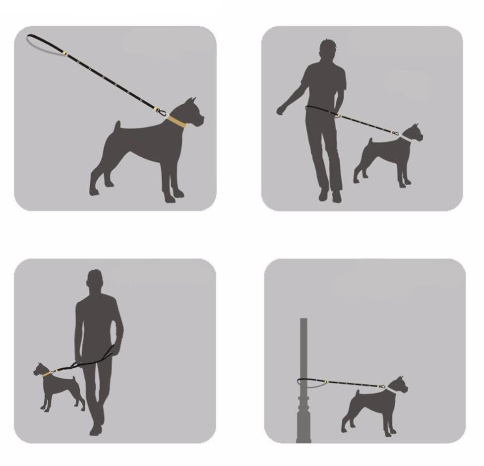 Illustrations showing different uses of multifunctional dog lead
