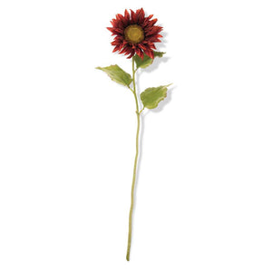 Burgundy Sunflower Stem