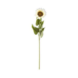 Single Large Cream Sunflower Stem - 42""