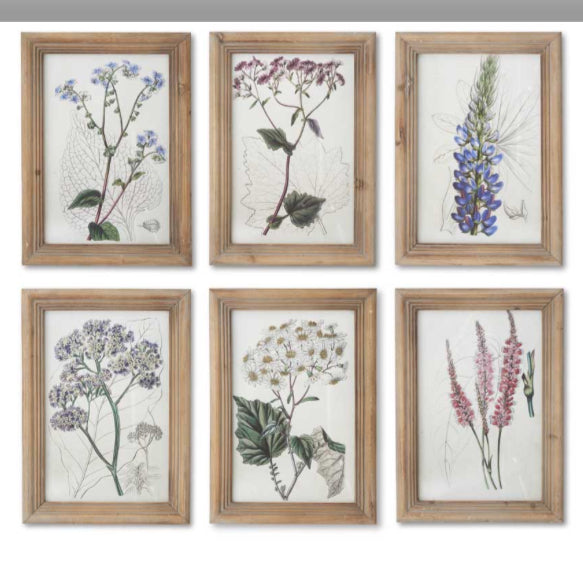 Flower Botanical Prints with Natural Frames(6 Styles Sold Separately)