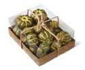 Mini Green Pumpkins and Gourds Box of 24