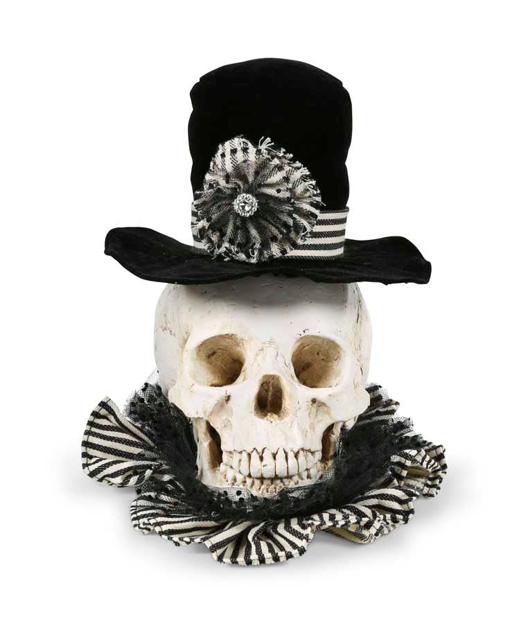 Skull with Black Velvet Hat and Ruffle Collar - Resin - 10 inches