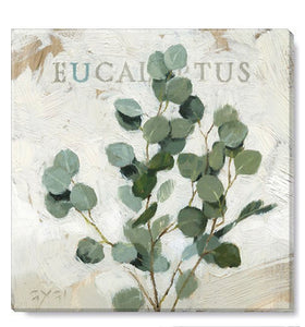 "Eucalyptus Giclee Canvas Wall Art- 9""x9"""