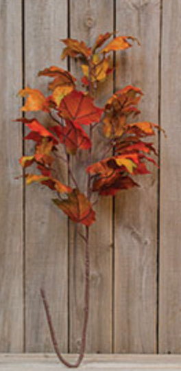 Fall Maple Leaves Stem