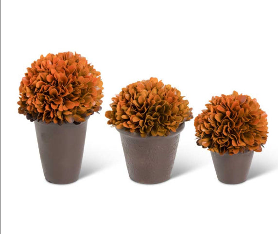 Orange Preserved Boxwood Potted Balls (3 Styles Sold Separately)