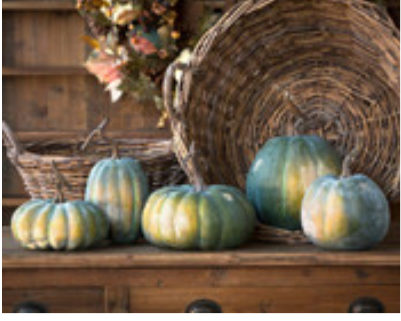 Early Green Pumpkin Collection- 5 assorted sizes- each sold separately