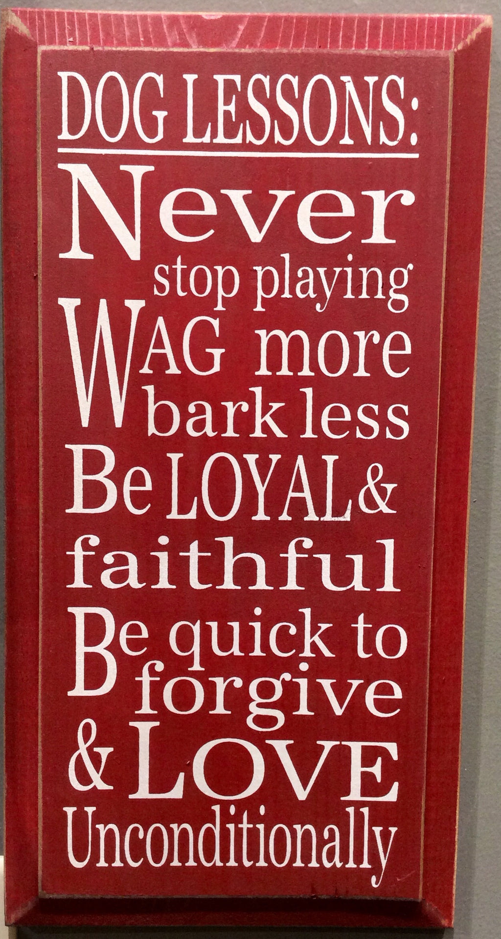 Dog Lessons: Never Stop Playing... - Wood Sign - Red with Cottage White Lettering