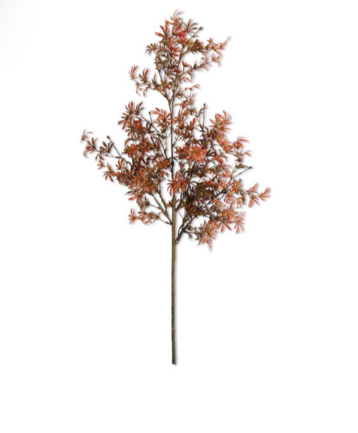 Fall Japanese Maple Stem- 30""
