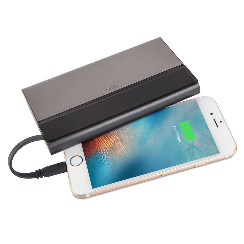 IonBank 10K Portable Battery