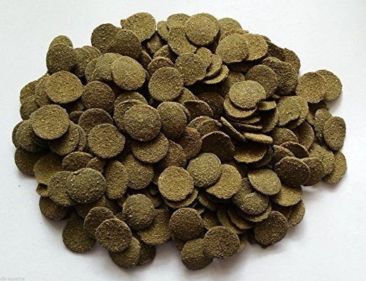 Premium Algae Wafers (50g)