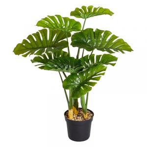 Swiss Cheese Artificial Plant