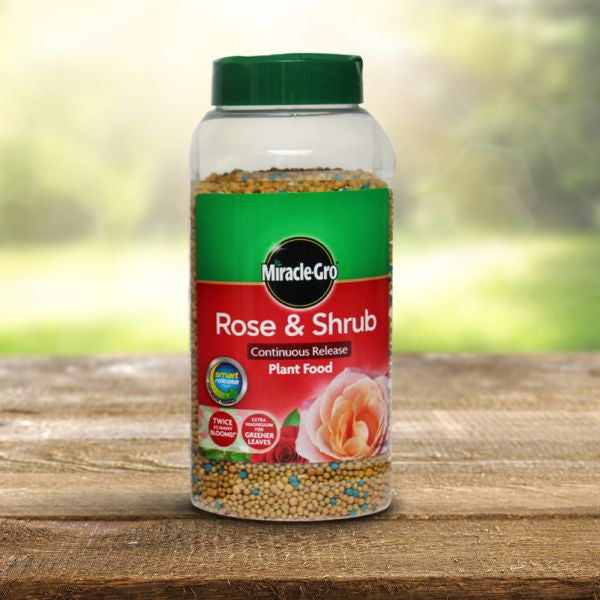 Miracle Gro Rose and Shrub Slow Release Jar1kg