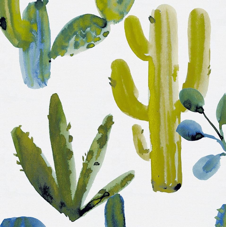 Blue Painted Cactus