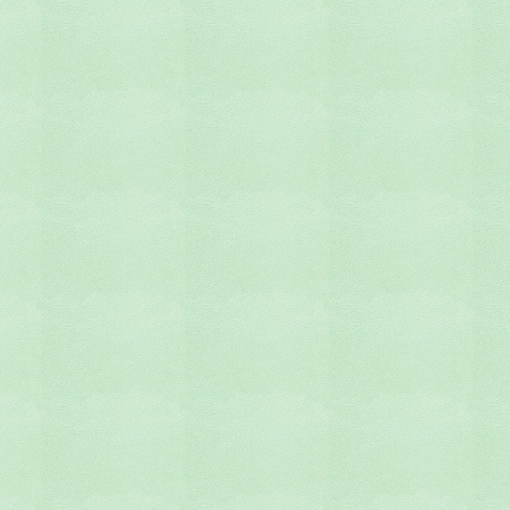 Product image for Solid Mint Minky Fabric